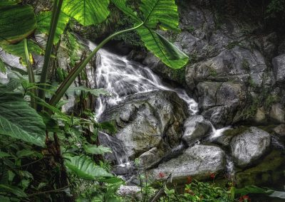 Waterfall of El Yunque